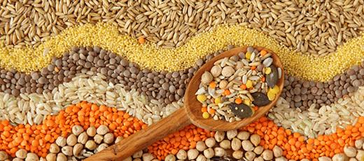 gluten-free-grains-3
